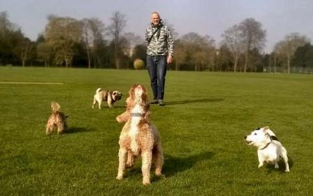ben the dog walker
